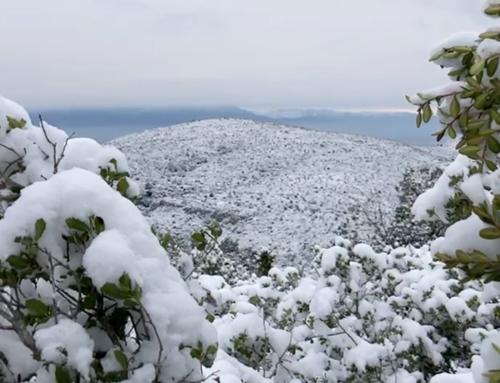 Protecció Civil demana a la ciutadania extremar la precaució davant el temporal de neu, onatge i vent del cap de setmana