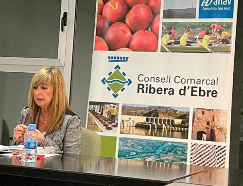 La Ribera d'Ebre posa en marxa el Consell Assessor del Pla de Reactivació Econòmica