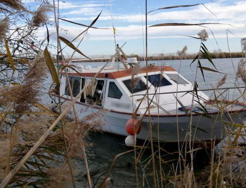 Els Mossos d'Esquadra detenen un home per robar una embarcació del port de Deltebre