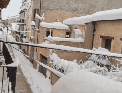 La nevada de Filomena deixa sense llum a Arnes, Caseres i la Palma d'Ebre
