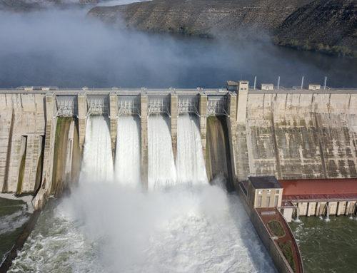 Ecologistes en Acció reclama iniciar ja el trasllat de sediments dels embassaments per salvar el delta de l'Ebre