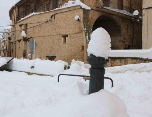 """""""En poc temps, la neu torna a tapar tot el que hem retirat"""""""