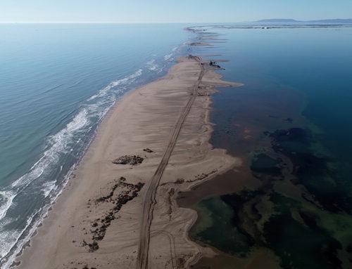 El govern espanyol calcula que un 35% de l'istme del Trabucador ha quedat finalment submergit