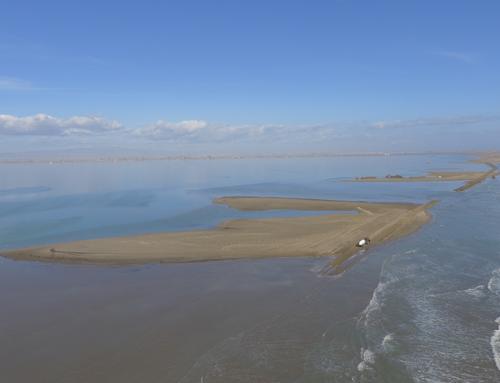 Una comissió tècnica desplegarà el Pla de protecció del Delta amb la col·laboració de la Taula de Consens