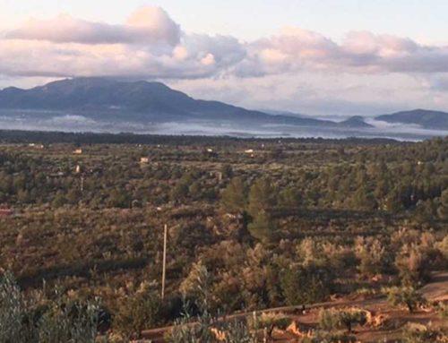 Un centenar de veïns s'oposen al parc eòlic 'Vandellós-II' que s'estendrà de Camarles a la nuclear