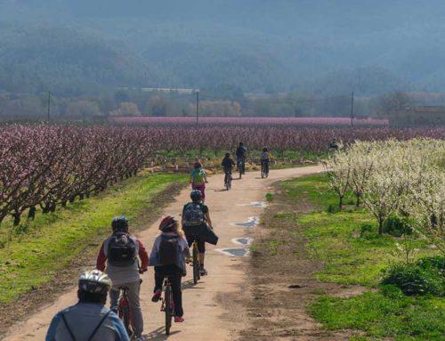 Torna la 'Ribera en flor' amb deu experiències turístiques per la Ribera d'Ebre