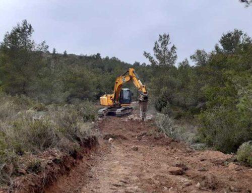 Agricultura inicia treballs de prevenció d'incendis a la zona de Tivissa, castigada històricament pel foc