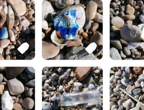 Institut Sòl de Riu d'Alcanar ja ha iniciat el seu propi repte en el marc de la campanya Catalunya Clean Up Challenge