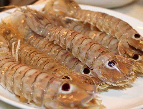 Les VIII Jornades Gastronòmiques de la galera portaran aquest producte a una quarantena de restaurants