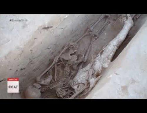 Ja s'han trobat més de 90 cossos a la fossa de Santa Magdalena, a Móra d'Ebre