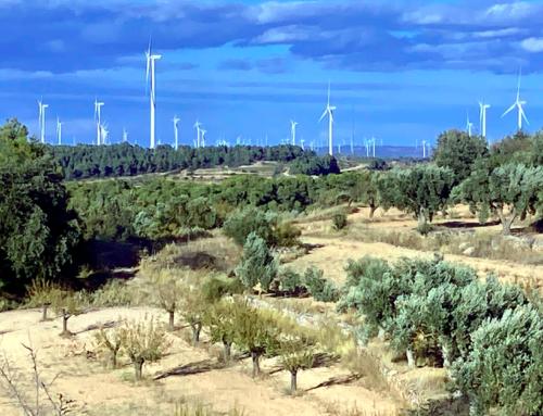 Naturgy inicia els treballs per construir els parcs eòlics Barrancs i Punta Redona a la Terra Alta