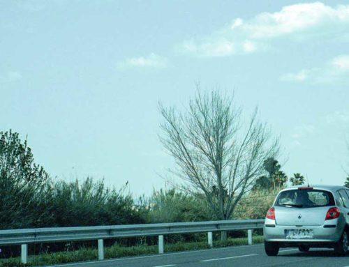 Denuncien un 'fitipaldi' a la carretera de baix d'Amposta a la Ràpita