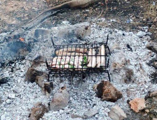 Els agents rurals denuncien una barbacoa il·legal a Amposta