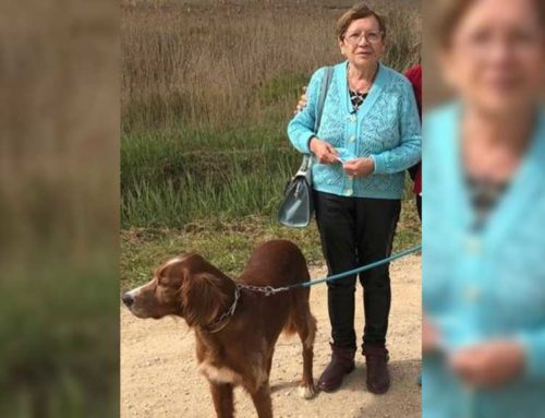 Busquen a una dona gran desapareguda a Tortosa aquest matí