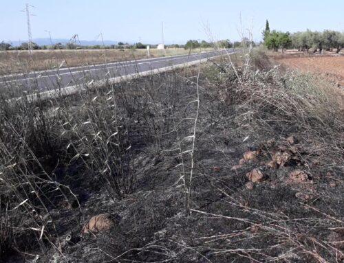 Un incendi agrícola crema 3 hectàrees a Godall
