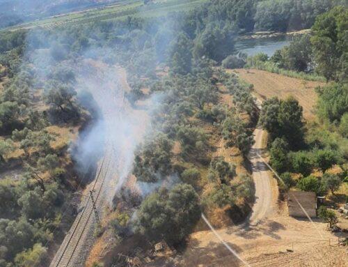 Els Bombers revisen la zona de l'incendi de Garcia per evitar que revifin punts calents
