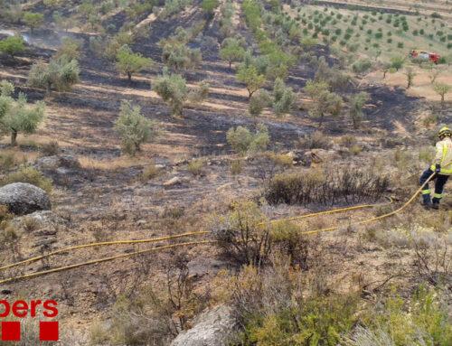 Els Bombers treballen en l'extinció d'un incendi a Tivissa