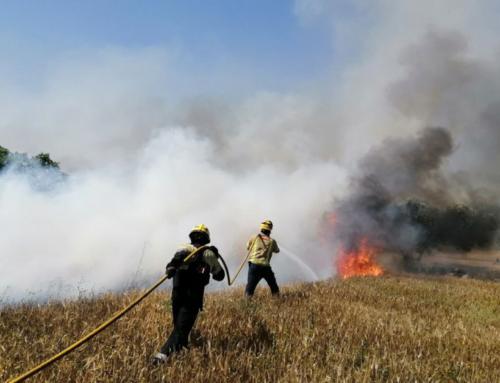 Diversos incendis de vegetació actius en plena onada de calor a l'Ebre