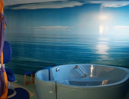 Retornen els parts a l'aigua a l'Hospital de Tortosa Verge de la Cinta