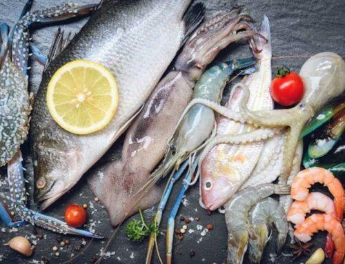 L'IRTA desenvolupa un model per predir excés de microalgues tòxiques a les aigües costaneres