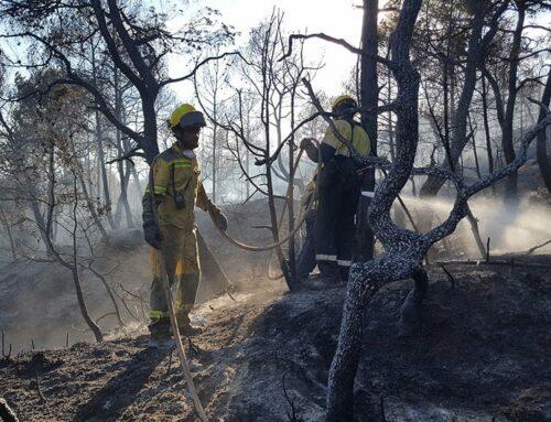 La Diputació de Tarragona dona suport a les ADFs per a la prevenció d'incendis forestals