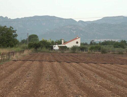 Un 50% de la superfície del Baix Ebre i el Montsià, potencialment contaminada per nitrats