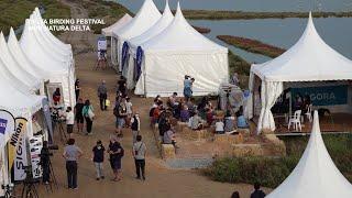 Deltabirding Festival