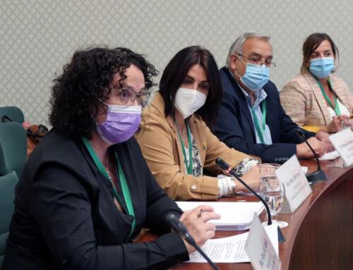 Neus Sanromà defèn la postura contra la MAT a la Comissió del Parlament de Catalunya